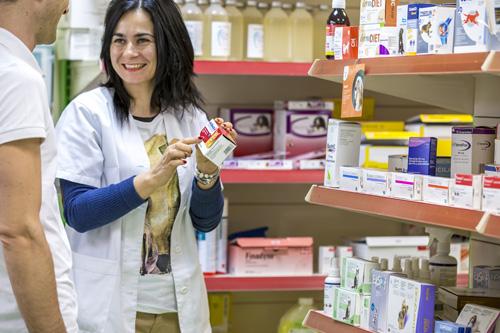 veterinario_gijon_asturias
