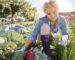 Mujer recolectando vegetales en la huerta
