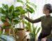Mujer atendiendo sus plantas.